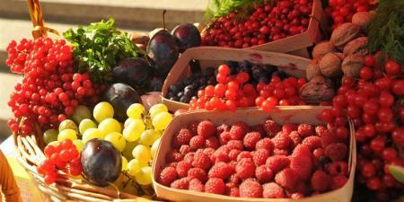 Непогода в Украине «забрала» почти 800 тысяч тонн урожая плодов и ягод
