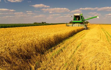 Рейдеры пытались захватить имущество одного из крупнейших фермерских хозяйств Украины на 130 млн. гривен