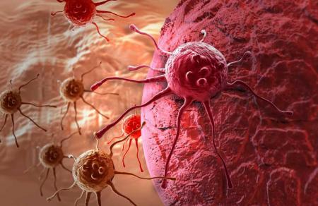 В США испытывают вещество, запускающее самоуничтожение раковых клеток