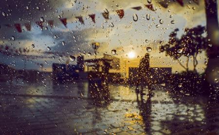 В Киеве завтра усилится ветер, возможен сильный дождь