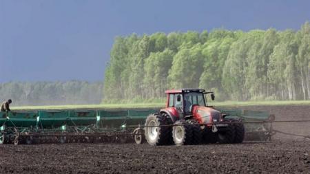 Перед открытием рынка земель нужно решить проблему с аграрным рейдерством