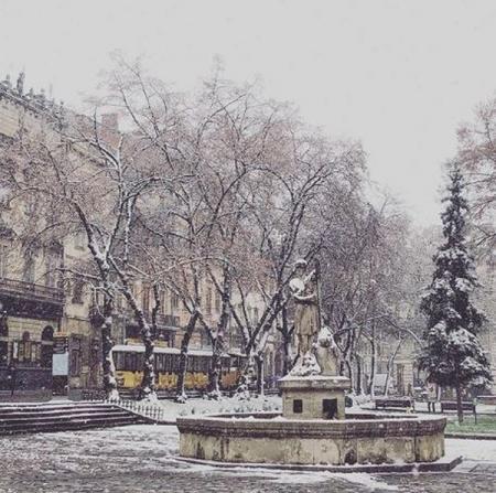 Lviv_Probki_19.11.18