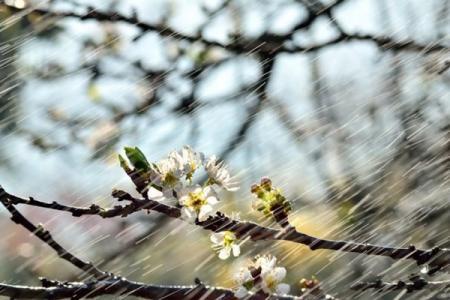 Ykraina_Pogoda_23.04.18