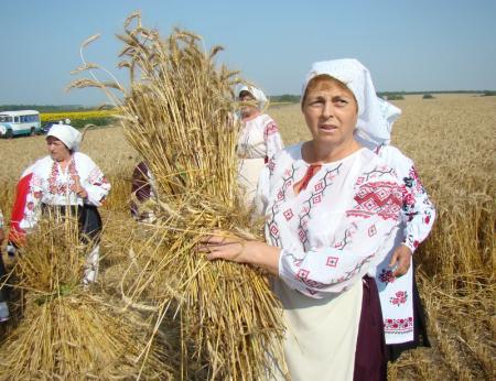 Воспевание «селянской Украины» и сепаратизм: где тут связь?