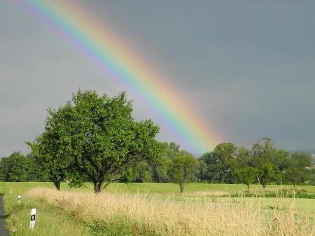 rainbow-heaven-trees-nature-sky-landscape-summer-natural-field