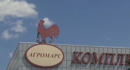 Трех владельцев «Гавриловских курчат» арестовали на 2 месяца