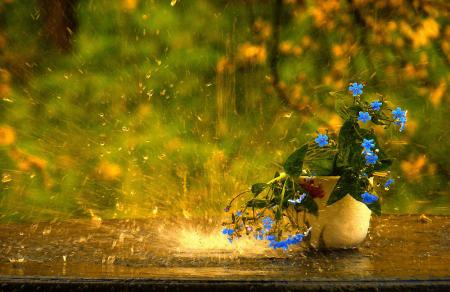 В Украину идут затяжные дожди, а начало августа готовит