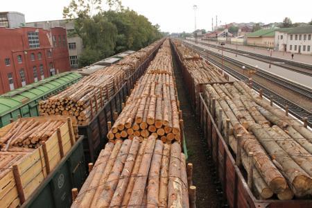 drevesina-eksport448888122255