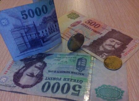 Венгрия требует конфисковать жилье у украинцев с фиктивной пропиской и незаконной пенсией