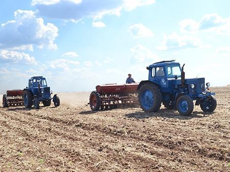 traktor_pole1