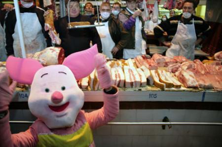 Гриппу подложили свинью