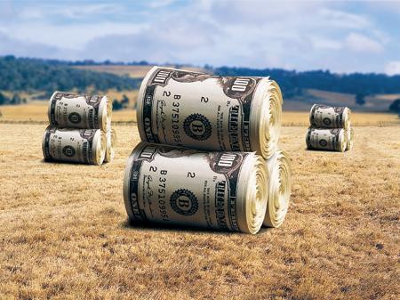 Чи стануть аграрні розписки ефективним фінансовим інструментом
