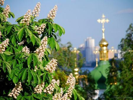 Україна сьогодні відзначає День Хрещення Київської Русі