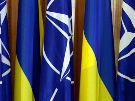 В НАТО объяснили решение по Украине, опровергнув заявление Венгрии