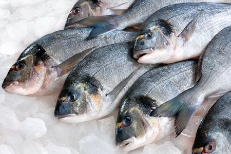 Из-за аннексии Крыма вылов рыбы в Украине сократился в 2,5 раза