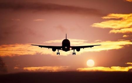 Коронакризис: 43 авиакомпании прекратили работу