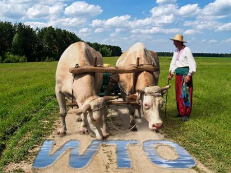 Навіщо Україні СОТ, або що змінилося за 5 років