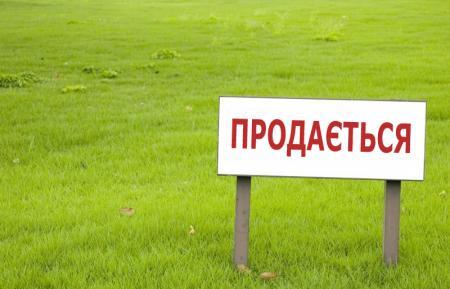 Что такое «земельный пай» и стоит ли упразднять мораторий на землю