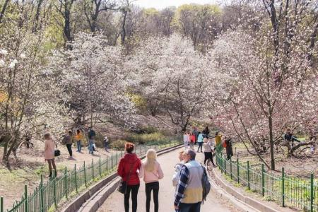 magnolii-park_25.02.20