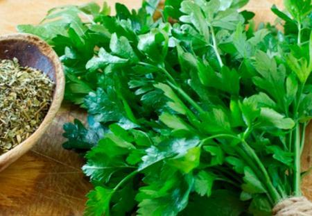 petrushka-lechebnye-svojstva-i-protivopokazaniya.2_17.08.18
