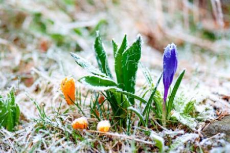 В Украине прогнозируют резкое похолодание