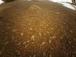 Мини-вертолет NASA сделал первое цветное фото на Марсе